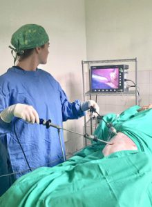 Laparoscopic spay